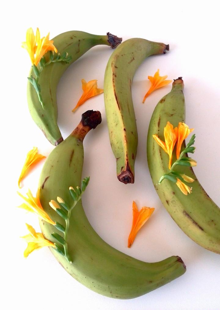 banana-biomassa